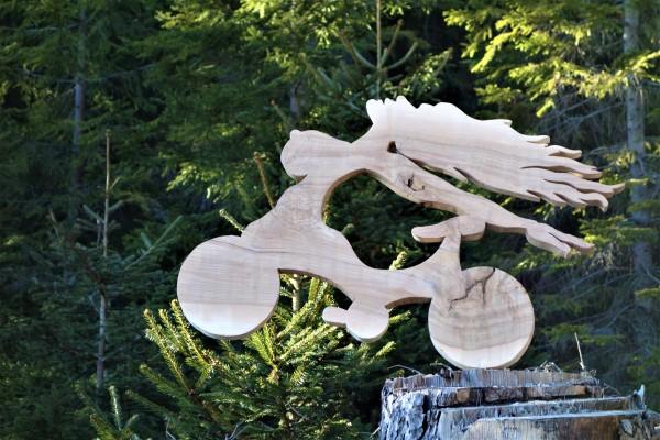 Chimära, Trail ART, Sphinxelia, Shinx, Wexl Trail, Christof Seiser, Wechsel, Mönichkirchen