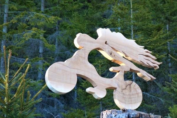 Trail ART,Chimära, Shinx, Wexl Trail, Christof Seiser, Wechsel, Mönichkirchen